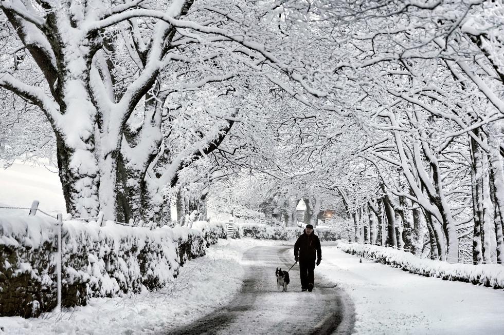 Un hombre camina con su perro después de la primera nevada de la temporada, en Carrshield, cerca de Hexham en Northumberland, Inglaterra. Los meteorólogos advierten que podría haber más nieve y tiempo helado en camino. (Foto: Owen Humphreys/ vía AP)