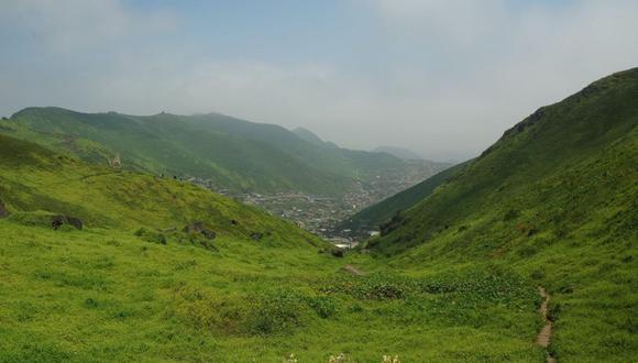 Se viene fiscalizando a organizaciones y empresas que ofrecen visitas turísticas a las lomas ubicadas en la capital. (Foto: Municipalidad de Lima)