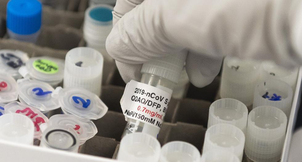 Imagen referencial.  Los resultados obtenidos deben ser todavía validados por la comunidad científica. (ANDREW CABALLERO-REYNOLDS / AFP).