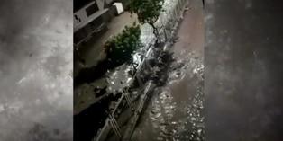 Tacna: caída de huaicos por intensas lluvias deja tres muertos