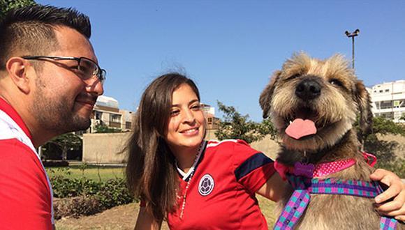 Tener un perro nos obliga a salir de casa y a tener más contacto con nuestros vecinos y con nuestras comunidad.