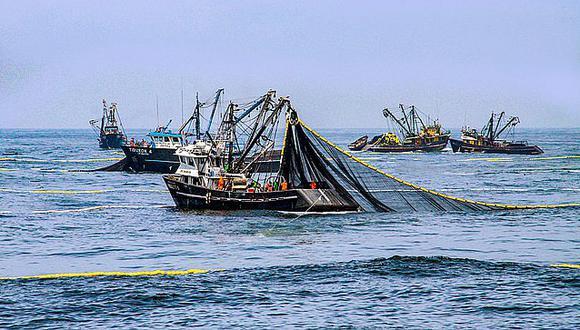 Pesca de anchoveta en el sur logra menos del 50% de su cuota.