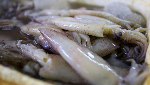 Para evitar la pesca ilegal del calamar gigante se requiere fortalecer el monitoreo y control de la flota en aguas internacionales. (Foto: GEC)