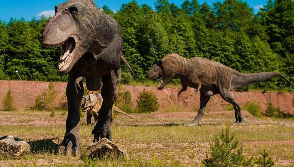 Los tiranosaurios vivieron hace más de 70 millones de años. (Pixabay)