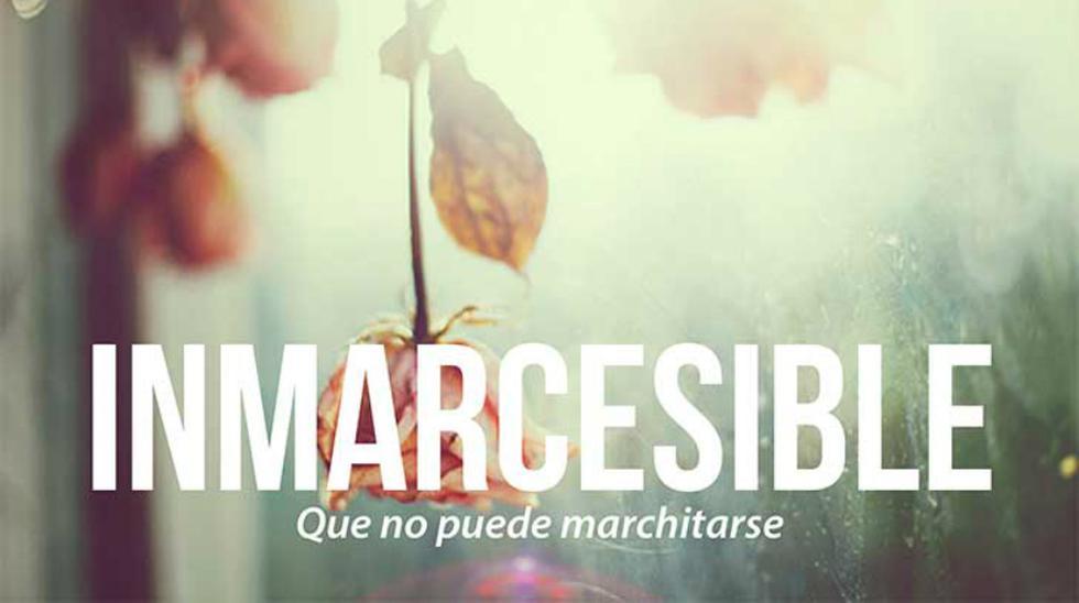 Las 20 palabras más bonitas del idioma español - 19
