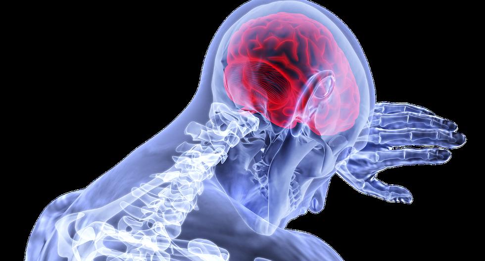 Este tipo de neoplasia es responsable del 7 por ciento de las muertes por cáncer. (Foto: Pixabay)