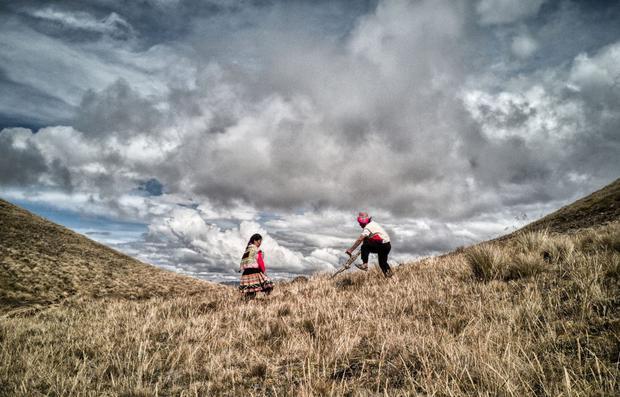 El documental destaca el conocimiento ancestral de los agricultores. En la imagen, Alberto Chura, presidente de Asociación Papas Nativas, y su esposa en Challabamba, Cusco. (Foto: Filfilms)