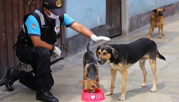 """Sereno de la Municipalidad de Magdalena del Mar lleva comida a perros sin hogar del distritos como parte de la campaña campaña """"Patitas del alma"""", activada para apoyar a estos animales durante la cuarentena. (Foto: Municipalidad de Magdalena)"""