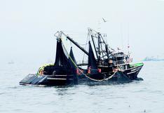 Produce alista inicio de la segunda temporada de pesca de anchoveta para la primera semana de noviembre