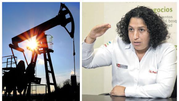La nueva Ley Orgánica de Hidrocarburos que se debatirá en el Congreso respeta la normativa ambiental, señala Muñoz.