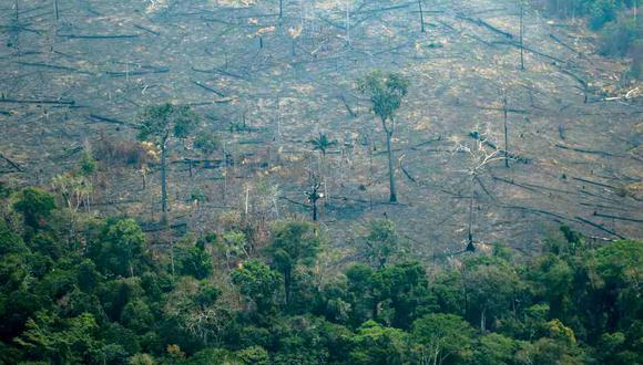 Vista aérea de las áreas quemadas de la selva amazónica, cerca de Boca do Acre, estado de Amazonas, Brasil, en la cuenca del Amazonas. (Foto: AFP)