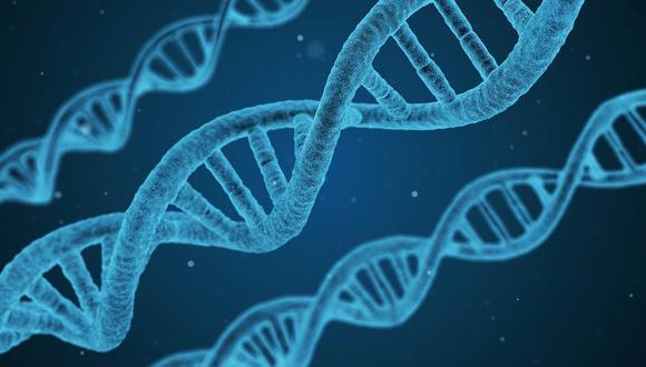 El factor genético en el cáncer es importante. (Foto: Pixabay)