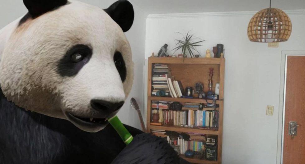 ¡Atento! Así puedes tener un león, gato, tigre, elefante, tiburón, en tu casa gracias a esta herramienta de Google 3D. (Foto: Google)