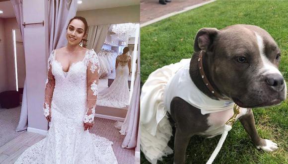 La perrita de raza pitbull fue adoptada cuando tenía cinco meses. (Foto: Facebook)