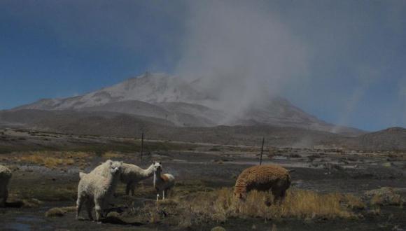Ubinas: Volcán volvió a emitir una estela de ceniza