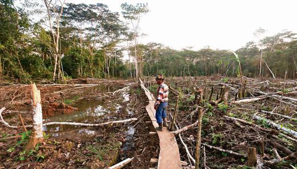 Emergencia en el lote 8: la otra historia del río Corrientes