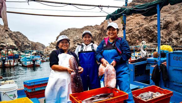Mujeres de la Asociación Mujeres Emprendedoras de Quilca descargando el pescado. Foto: WWF
