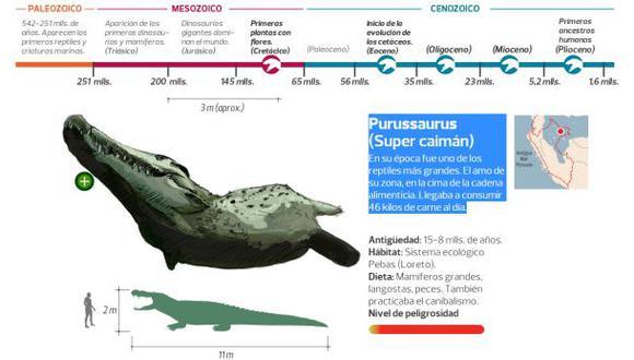Cuando las megabestias dominaban el Perú