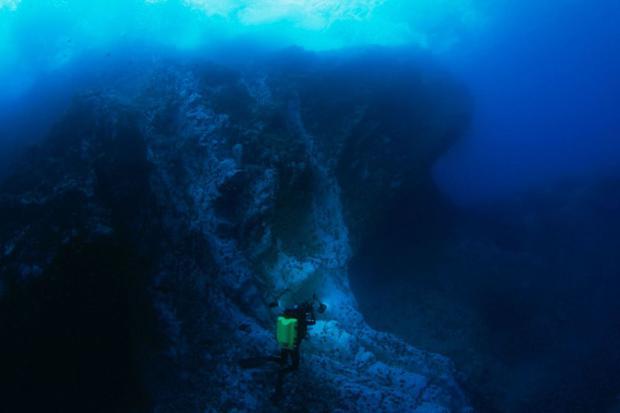 Montes submarinos de la Dorsal de Nasca, ubicados frente a la costa de Ica. (Foto: Sernanp)