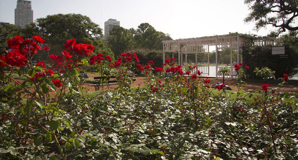Conoce los destinos de primavera más populares de Sudamérica - 4