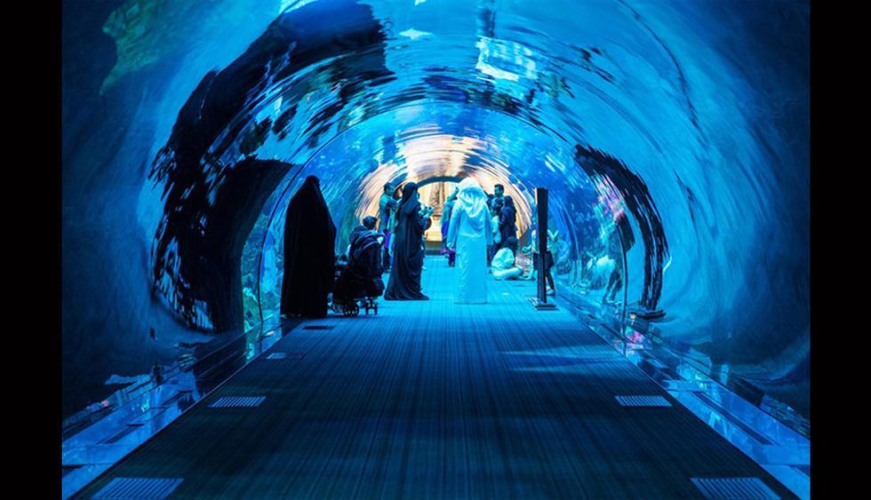 Dubai, Emiratos. Nada es imposible para los promotores de los Emiratos con tal de atraer turistas. Cuando planearon el Dubai Mall, no solo lo pensaron como uno de los más grandes del mundo sino que construyeron un acuario como atracción. Es un gigantesco reservorio de 10 millones de litros de agua en el que viven 33 mil animales. (Foto: Difusión)