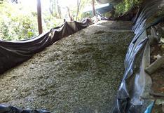 Vraem: Policía Nacional destruye 10 pozas de maceración de coca | FOTOS