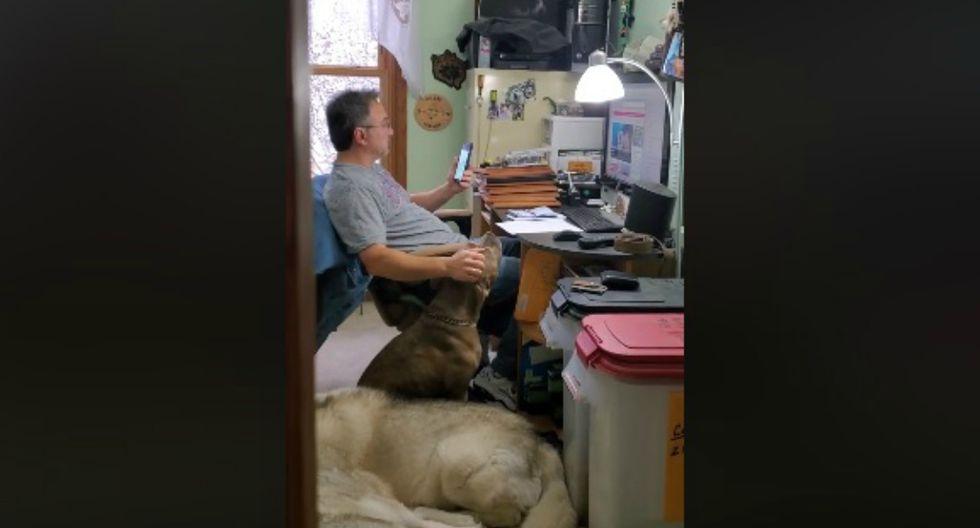 Se viralizó en Facebook el instante en que un hombre y su perro se entretienen al ritmo de una de sus canciones preferidas. (Foto: Facebook)