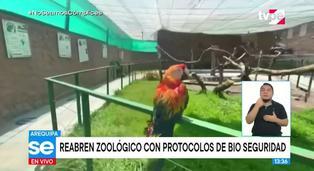 Arequipa: zoológico reabre sus puertas con protocolos de bioseguridad