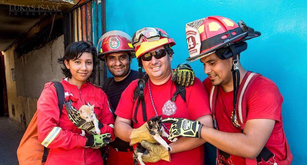 Bomberos voluntarios crearon brigada de rescate animal