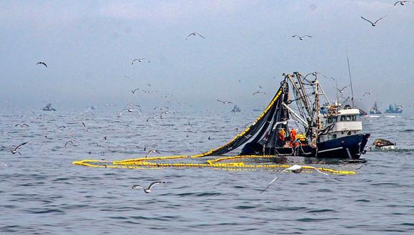 Con respecto a las exportaciones de harina y aceite, la anchoveta tiene una participación del 60% del promedio anual. (GEC)