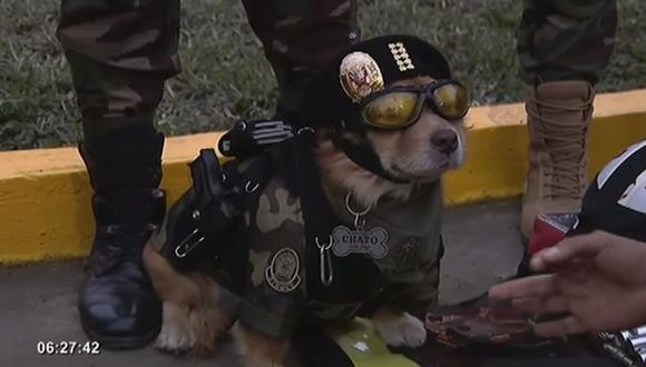'Chato' llamó la atención de los asistentes al desfile. (Foto: Captura/Panamericana Televisión)