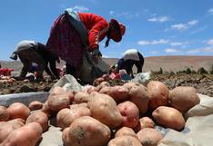 Día de la Mujer Rural: la situación de las mujeres del campo en un año marcado por la pandemia