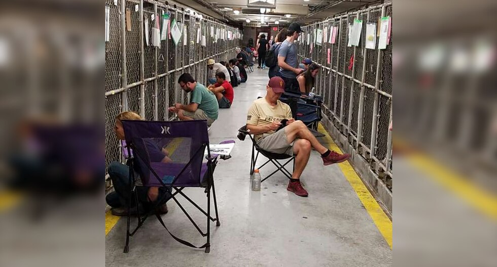 Voluntarios pasarán el 4 de julio con perros abandonados para calmarlos por fuegos artificiales. La iniciativa es viral en Facebook. (MCACC)