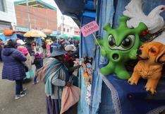 Los artesanos bolivianos desafían a la pandemia del coronavirus en la fiesta de la abundancia | FOTOS