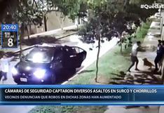 Surco: mascota salió en defensa de sus dueñas y mordió a delincuentes durante asalto   VIDEO