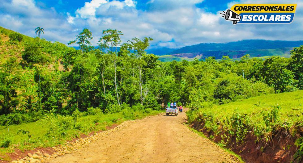 Una imagen típica de La Banda de Shilcayo que nos impulsa a cuidar y preservar este ecosistema.
