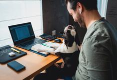 Día del Trabajo: 5 consejos para trabajar más concentrado