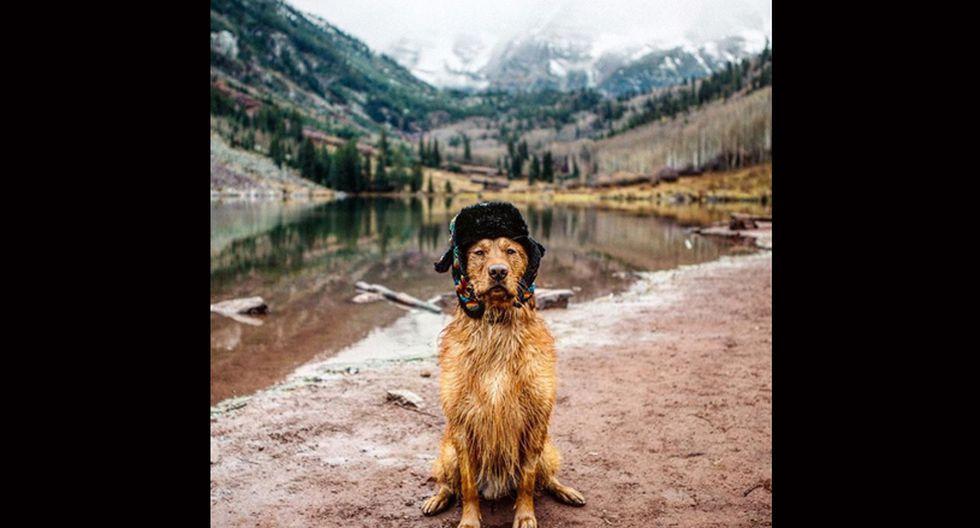 Aspen the Mountain Pup. Este Golden retriever proyecta ternura. Le gusta ir de camping, hacer senderismo y nadar rodeado de paisajes espectaculares. (Foto: Instagram/@aspenthemountainpup)