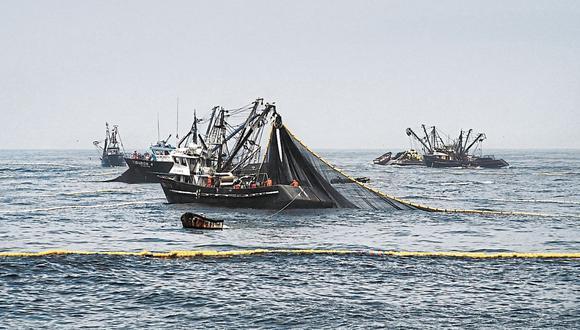 El Instituto del Mar del Perú (Imarpe) recomendó, a través de un reporte, adoptar las medidas de conservación de merluza pertinentes. (Foto: GEC)