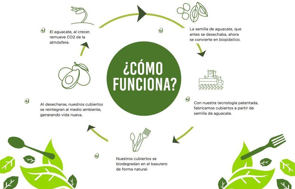 El ciclo de vida de los productos a base de semilla de palta. (Foto: Natural Pack Perú)