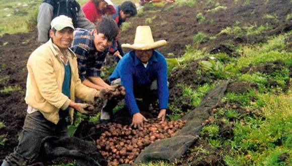 Debido a que han pasado varios días, los ciudadanos quieren saber quiénes serán los beneficiarios, pues aún se desconoce el padrón (Foto: Andina)