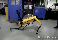 """Robot """"perro"""" que abre puertas pasó prueba de frustración y fuerza [VIDEO]"""