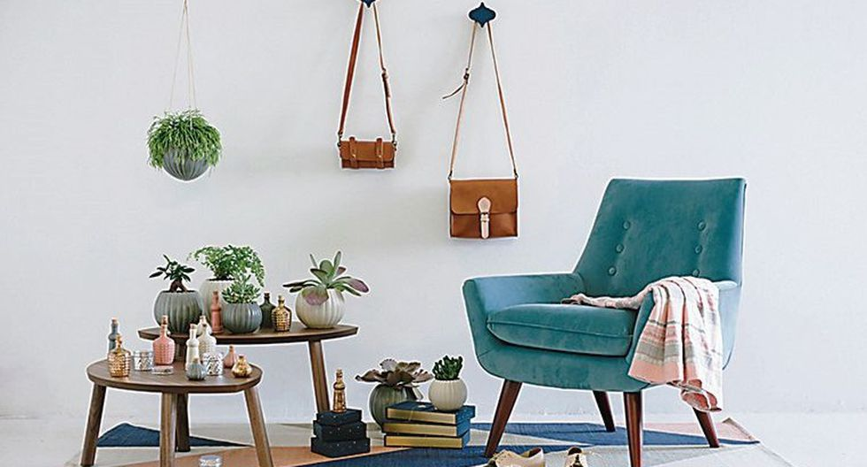 Ideas para integrar plantas a la decoración de tus ambientes | FOTOS