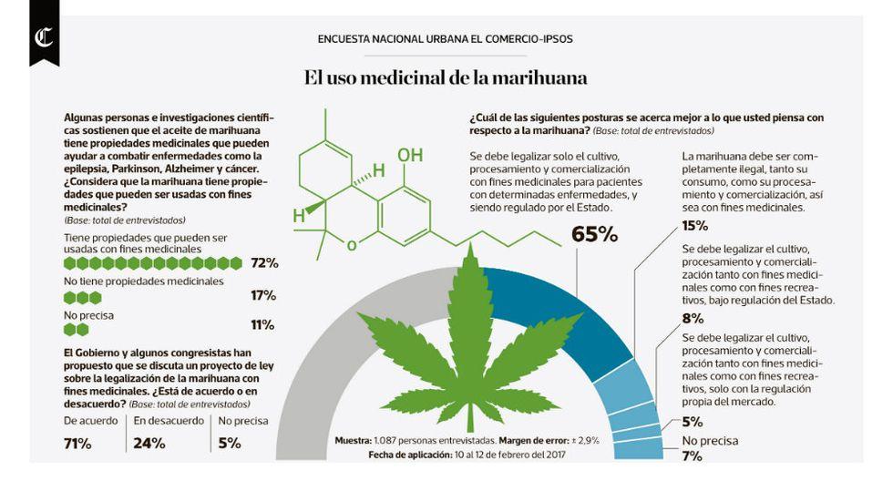 Infografía: el uso medicinal de la marihuana - 1
