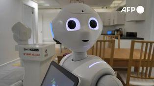 En Escocia programan robots para asistir a personas aisladas
