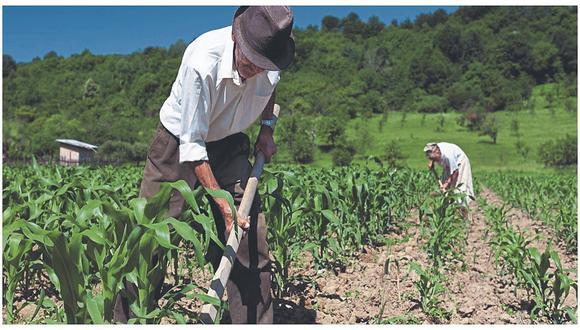 """Benites resaltó que se tienen S/ 400 millones en el Fondo Agroperú, que también son importantes porque van """"a la vena del pequeño agricultor familiar"""". (Foto GEC)"""
