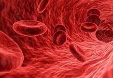 """El coronavirus tiene una """"fuerte preferencia"""" por un grupo sanguíneo, según estudio"""