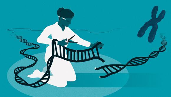 """La francesa Emmanuelle Charpentier y la estadounidense Jennifer Doudna recibieron el galardón por sus investigaciones sobre las """"tijeras moleculares"""", capaces de modificar los genes humanos. (Imagen: The Nobel Prize, The Royal Swedish Academy of Sciences, Johan Jarnestad)"""
