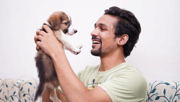 Nadie puede negar que el perro se ganó con justicia el título del mejor amigo del hombre.