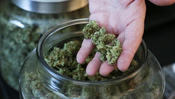 Inversionistas bursátiles se interesan por el cannabis legal